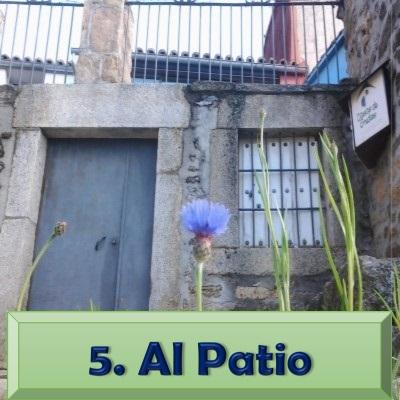 5. Al Patio.jpg