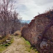 Los Loros - 03 (camino al embalse)